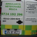 Ambulanta veterinara Bucuresti Miuta
